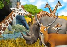 Cartoon Safari Scene With Rhin...