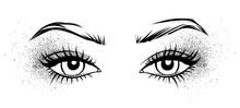 Female Eyes With Long Black Ey...
