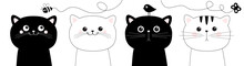 Cat Set . Black White Head Fac...