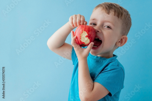 Fototapeta Baby child holding and eating red apple on blue background, food, diet and healthy eating concept obraz