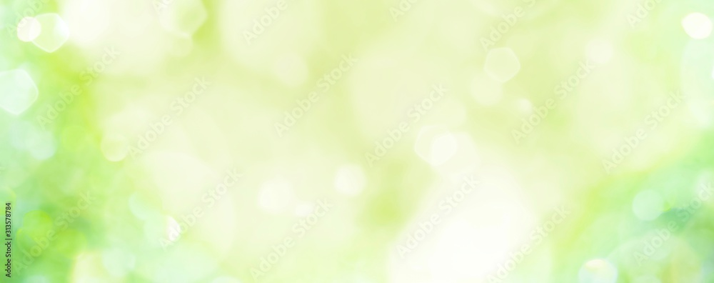 Fototapeta Spring background -  abstract banner - green blurred bokeh lights -