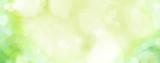 Fototapeta Fototapety z naturą - Spring background -  abstract banner - green blurred bokeh lights -