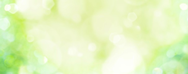 Spring background - abstract banner - green blurred bokeh lights -