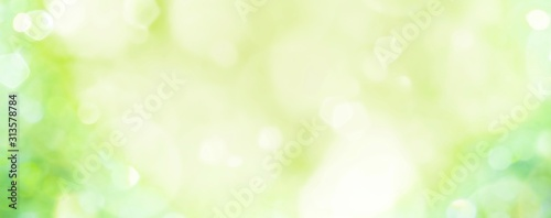 Spring background -  abstract banner - green blurred bokeh lights - - 313578784