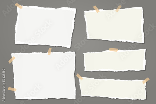 Fotografía Set of torn white note, notebook paper strips and pieces with soft shadow stuck with sticky tape on dark grey background