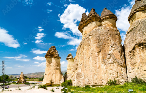 Valokuva  Fairy Chimney rock formations in Cappadocia, Turkey