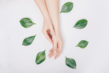 Concept Bio Nature Cosmetics S...