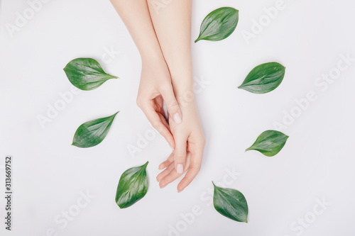 Fototapeta Concept bio nature cosmetics skin care. Beautiful stylish trendy female pink manicure with flower on background, top view obraz