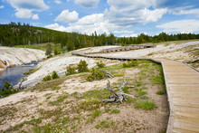 Boardwalk To Geyser Hill Group In Yellowstone National Park