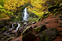 Waterfall In A Autumnal Forest In The Aspe Valley.