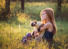 Young Girl With Kitten Outdoors In Meadow