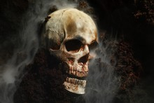 Skull Of A Dead Man In On The ...