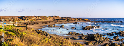 Slika na platnu Panoramic view of the Pacific Ocean coastline on a sunny winter day; Elephant se