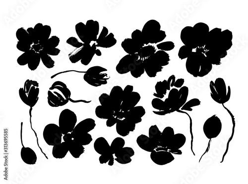 Cuadros en Lienzo Spring flowers hand drawn vector set