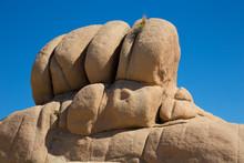 Rock Formations Near Jumbo Roc...