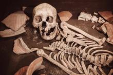 Ancient Human Bones In Ban Chiang Museum, Udon Thani - Thailand