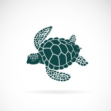 Vector Of Turtle Design On A White Background. Wild Animals. Underwater Animal. Turtle Icon Or Logo. Easy Editable Layered Vector Illustration.