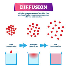 Diffusion Vector Illustration....