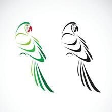 Vector Of A Parrot Design. Ani...