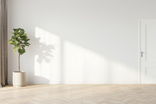 Plant Against A White Wall Mockup. White Wall Mockup With Brown Curtain, Plant And Wood Floor. 3D Illustration.