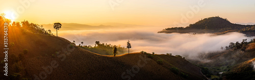 Fototapeta panorama of misty landscape with autumn mountain hill obraz