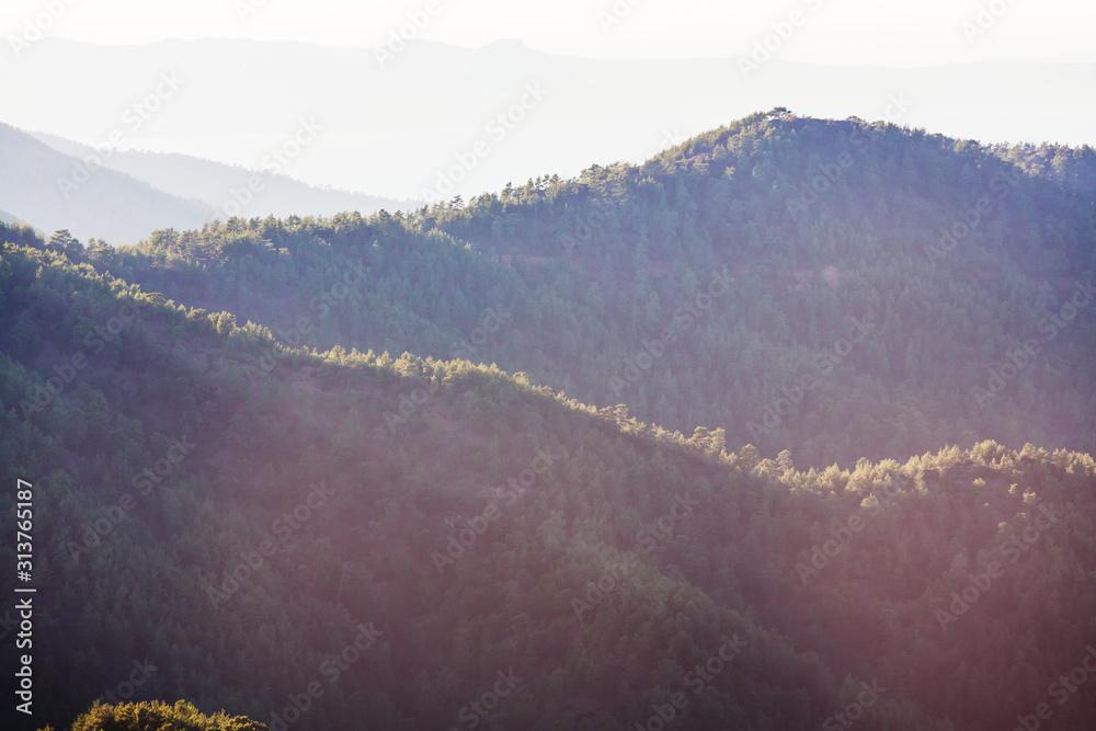 Fototapeta Green hills