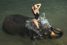 Happy Woman Is Bathing With The Elephant In The River