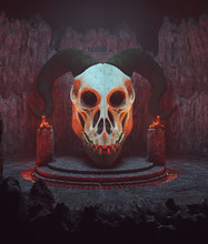 Dragon Skull In Ancient Place,...