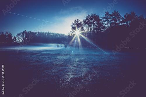 Obraz frosty morning on meadow near forest, light effects of dawn sun - fototapety do salonu