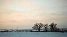 Winter Pink Landscape At Sunset