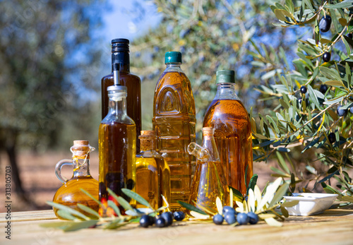 Fototapeta Bottles with olive oil and olive tree on a background of nature obraz