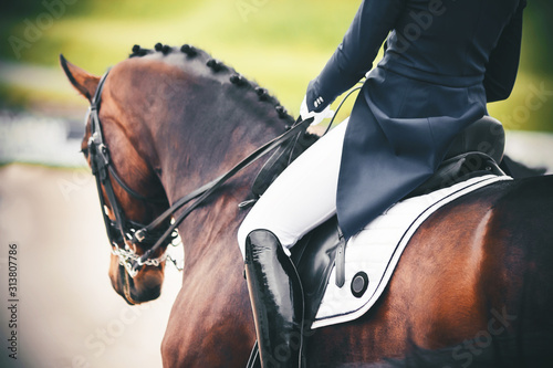 Foto On a beautiful Bay horse with a braided mane in the saddle sits a rider in a blue suit and lacquered black boots