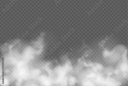 Obraz na plátně  Transparent effect with fog or smoke