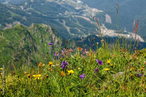 Photo Beautiful mountain landscape in summer