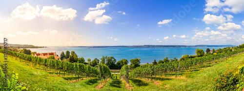 Obraz Bodensee Panorama in Birnau, Baden-Württemberg, Deutschland  - fototapety do salonu