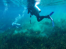 View Of Divers Underwater In S...