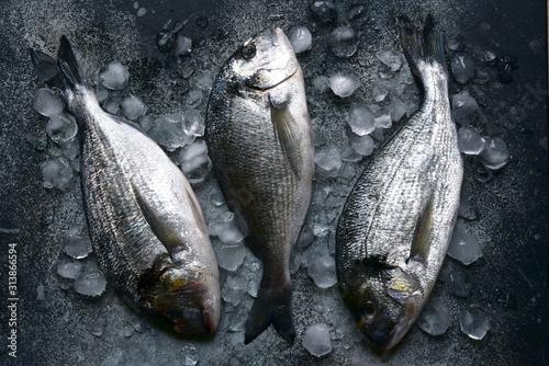 Fotografie, Obraz  Raw chilled dorado fish on an ice cubes