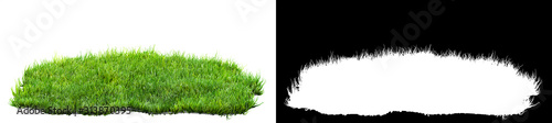 Obraz green grass turf isolated on white background with alpha mask for easy isolation 3D illustration - fototapety do salonu