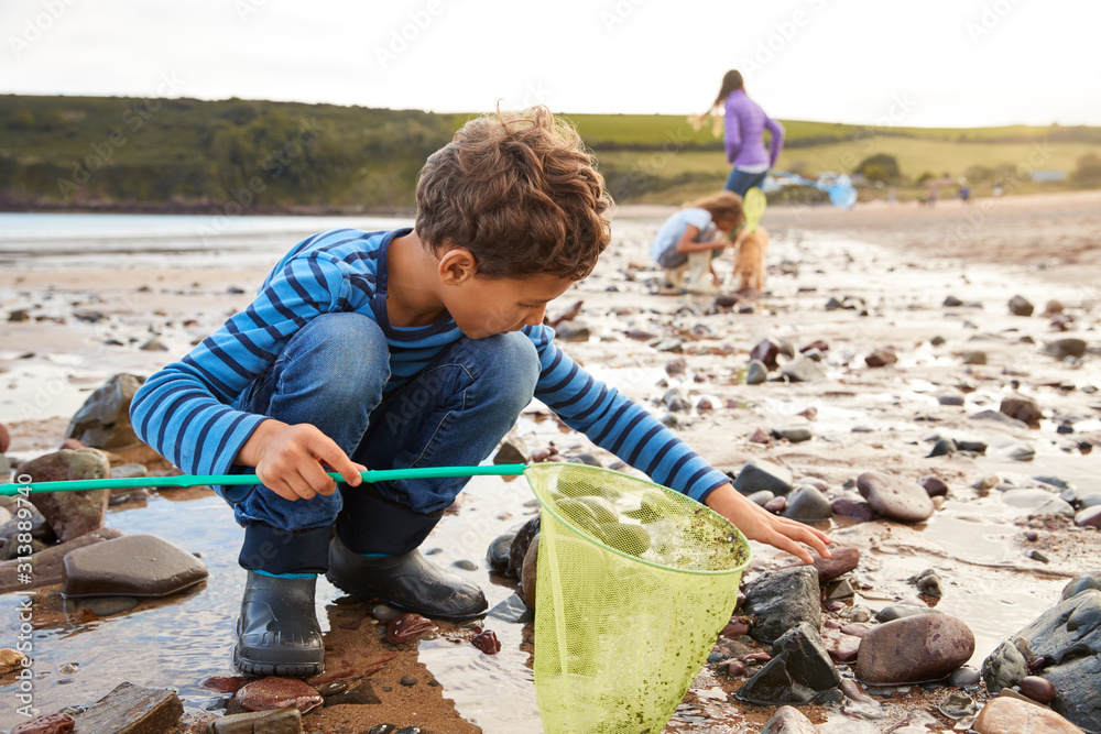 Fototapeta Children With Pet Dog Looking In Rockpools On Winter Beach Vacation