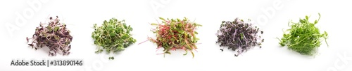 Assortment of fresh micro greens close up isolated on white Wallpaper Mural