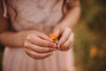 Girl Holding An Orange Flower