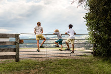 Siblings Climbing On A Fence O...