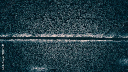 Top view of road in forest with first winter snow - 313914536