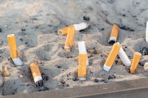 Fototapeta Cigarette butts in sand in an ashtray