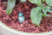 Smiling Frog Figurine Inside A Plant Pot
