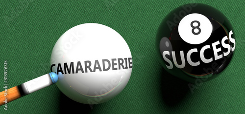 Photo  Camaraderie brings success - pictured as word Camaraderie on a pool ball, to sym