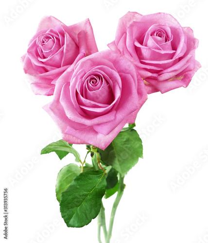 Fotografia Beautiful roses bunch isolated on white background