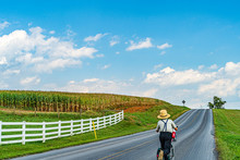 Amish Country Farm Field Agric...