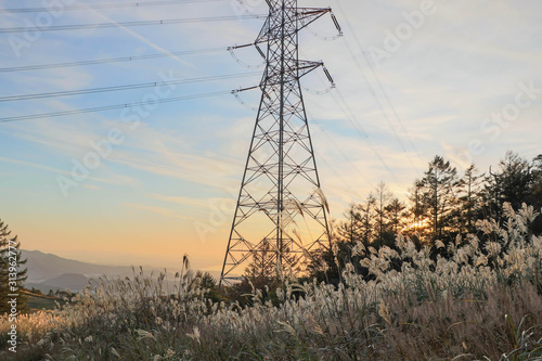 Photo High Tension Electric Line Standing onver Tall Grass landscape at sunset