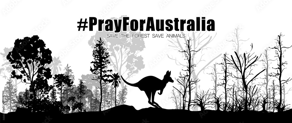 Fototapeta Concept of forest fire in Australia. Silhouette of a kangaroo with a fertile and arid tree. Pray For Australia. Vector illustration.